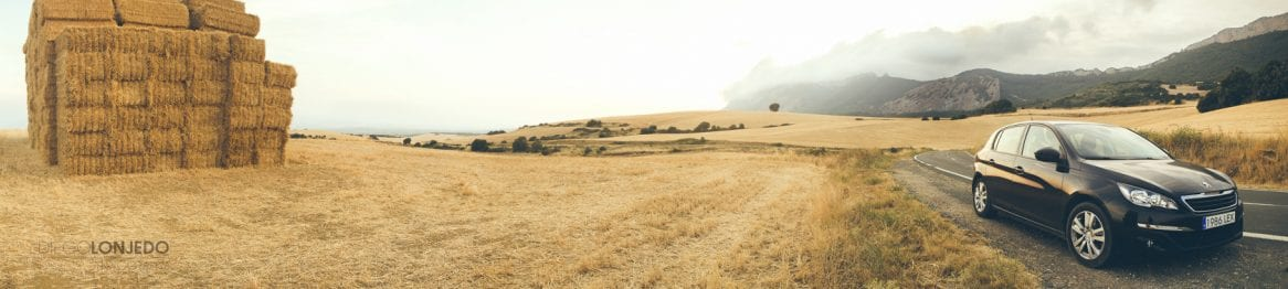 Fotografía de retrato en el campo